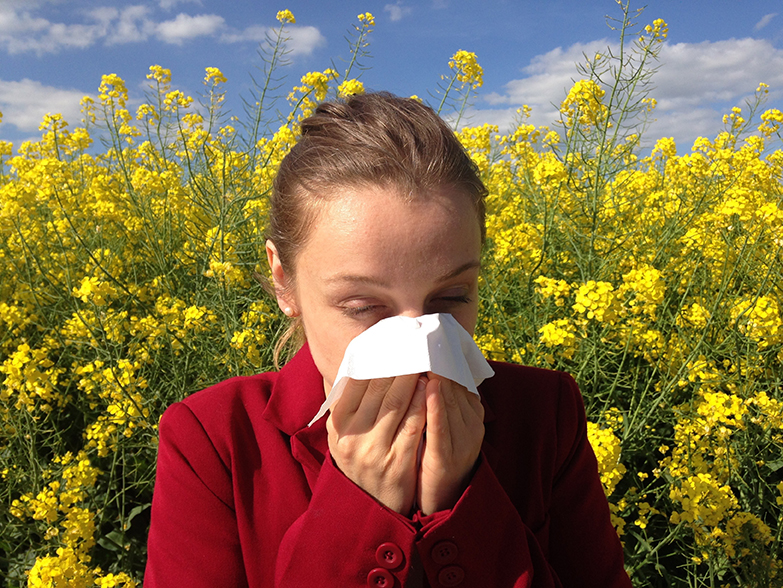 Aller-Lung Support™ for Perennial or Seasonal Allergies