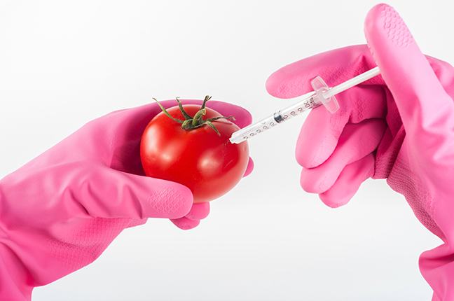 GMOs and Health: Any Risk?